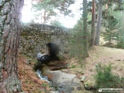 Hiking Calzada Romana de Cercedilla; cuevas del aguila cebreros rio alberche las tablas de daimiel